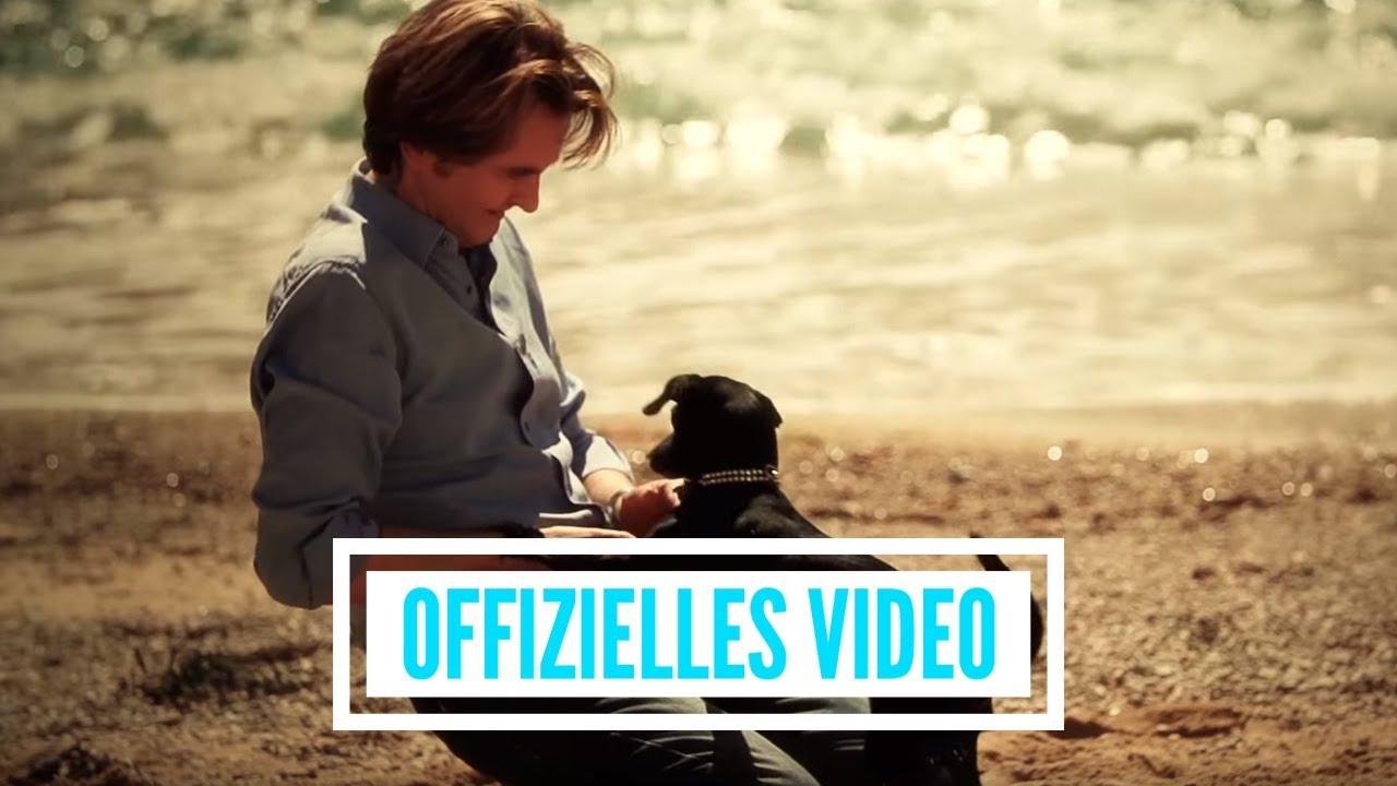 Youtube Vorschau - Video ID SNjxuS1xjCE